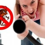 ¿Cómo matar cucarachas con remedios caseros?