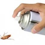 Como acabar con las cucarachas en casa definitivamente